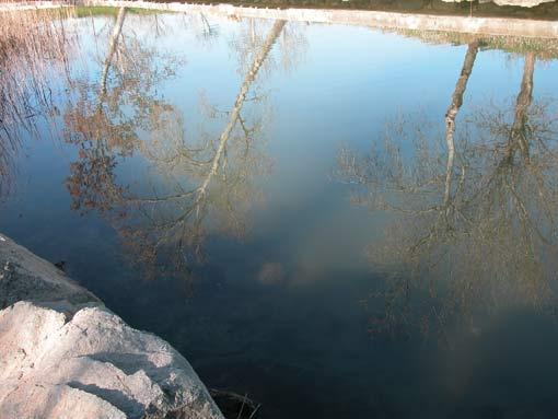 Fluvia-spiegelung