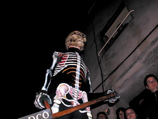 Verges Skelett