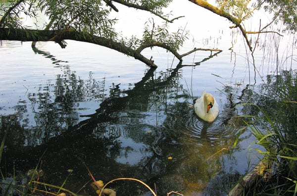 Wanderung um den See von Banyoles