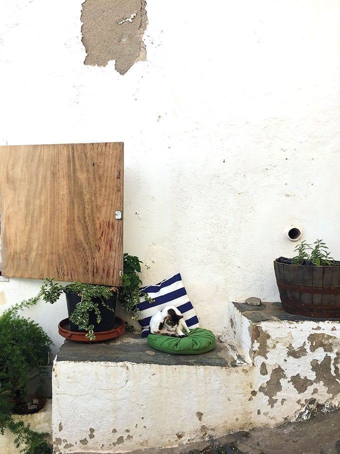 Bootstour, Cadaqués, Costa Brava