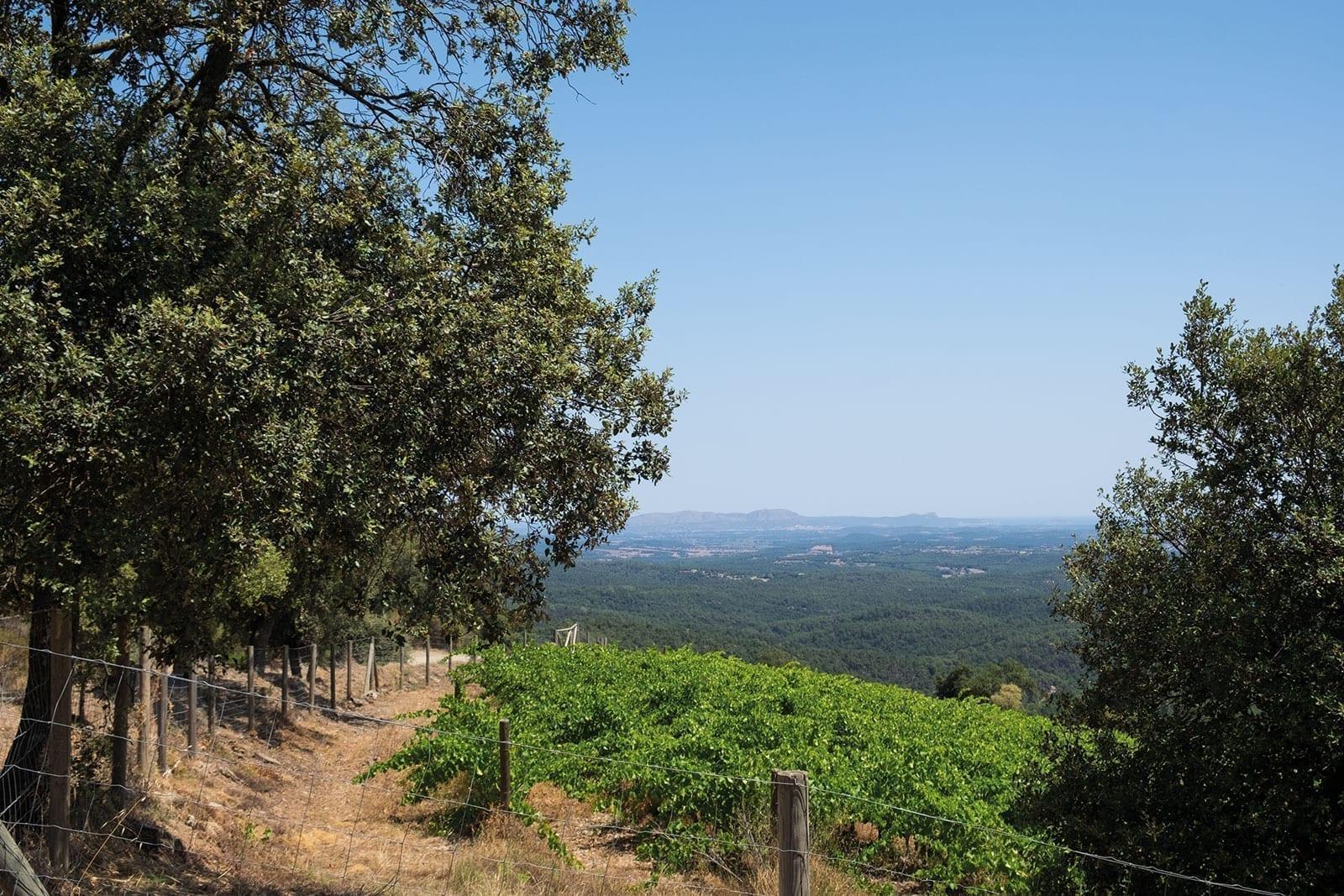 Las Gavarras, panorama, reserva natural