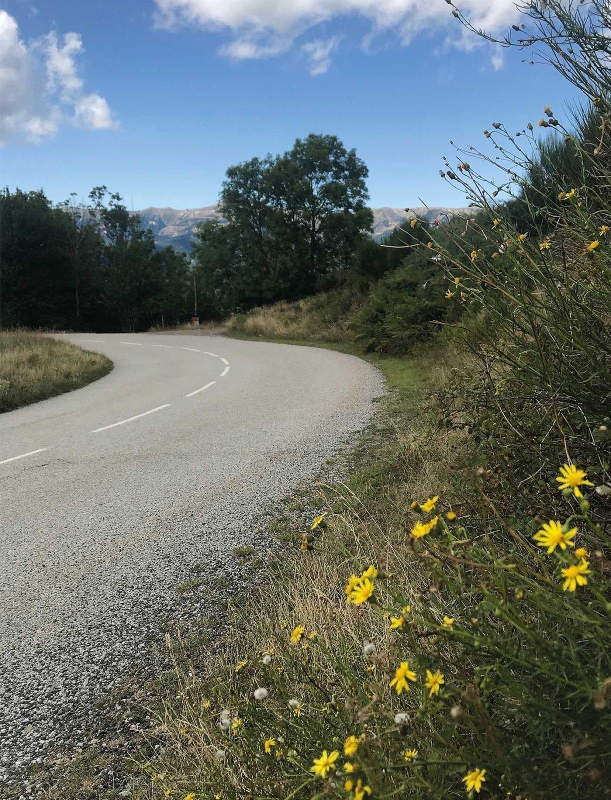 berge pflanzen katalonien