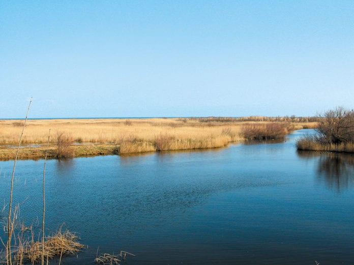 Aiguamols Flussdelta