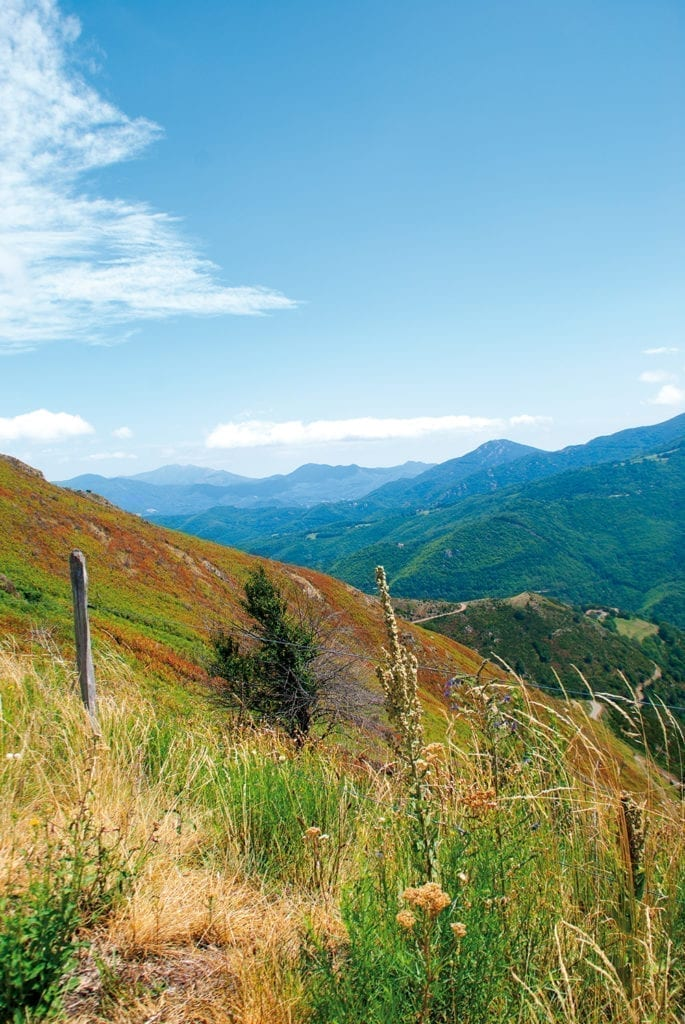 Panoramic view in the catalan mountains
