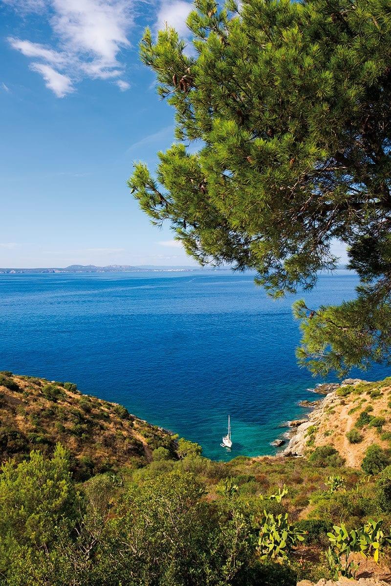 Blick auf kleine Bucht am Punta Falconera