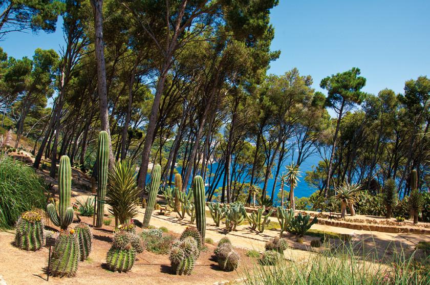 Die botanischen Gärten von Cap Roig.