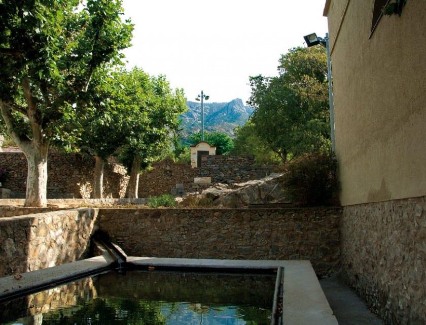 Die Quelle spendet frisches, gesundes Trinkwasser.