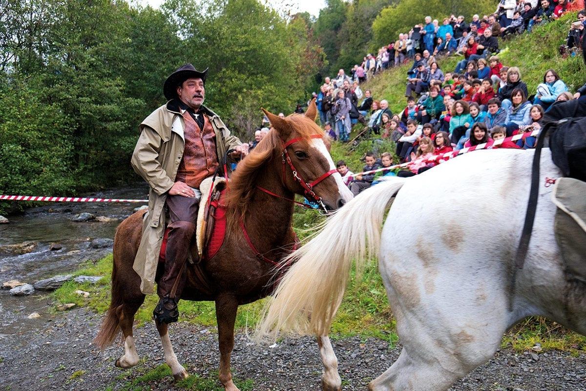 Vorreiter lenkt Pferde