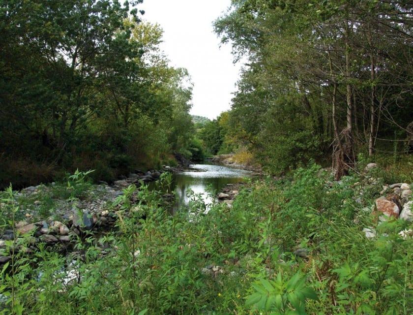 Die Flusslandschaft um Rabós.