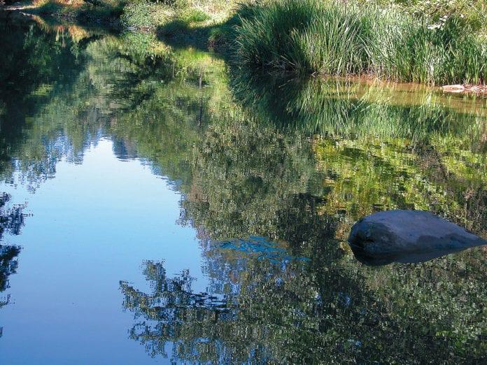 Wasserspiegelung Garrotxa
