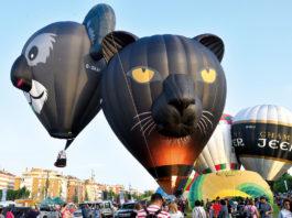 Ballons in Form von Koala und Panther