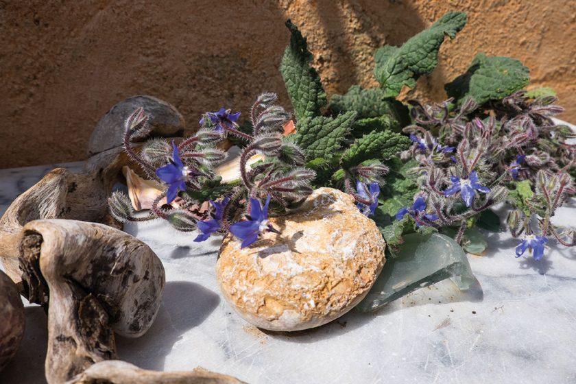 Dekoration aus Borretsch und Steinen