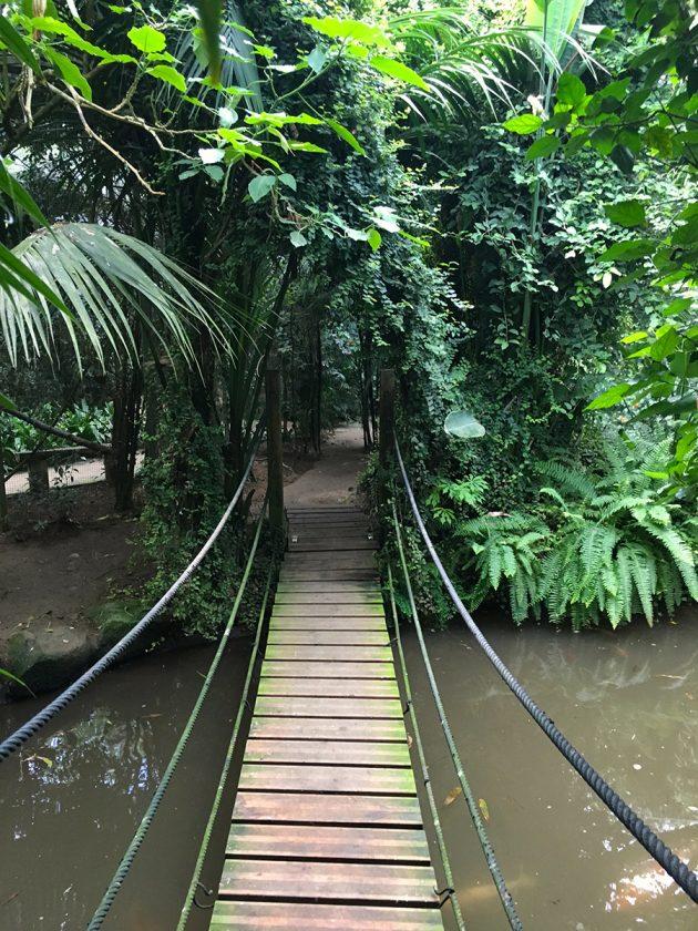 Dschungel - Butterfly Park - Empuriabrava - Costa Brava