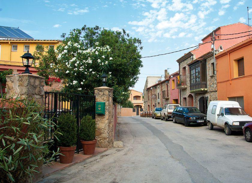Garriguella und leckerer Wein sowie gutes Olivenöl gehören zusammen