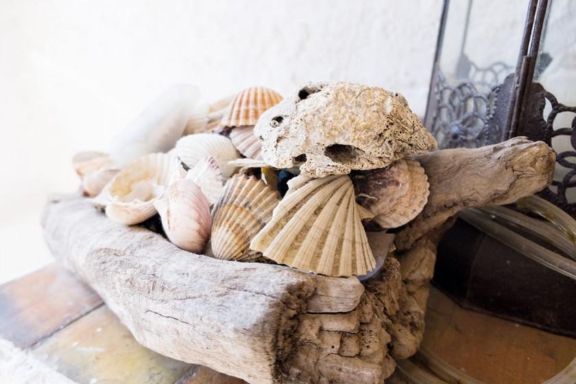 Strandschätze für zu Hause