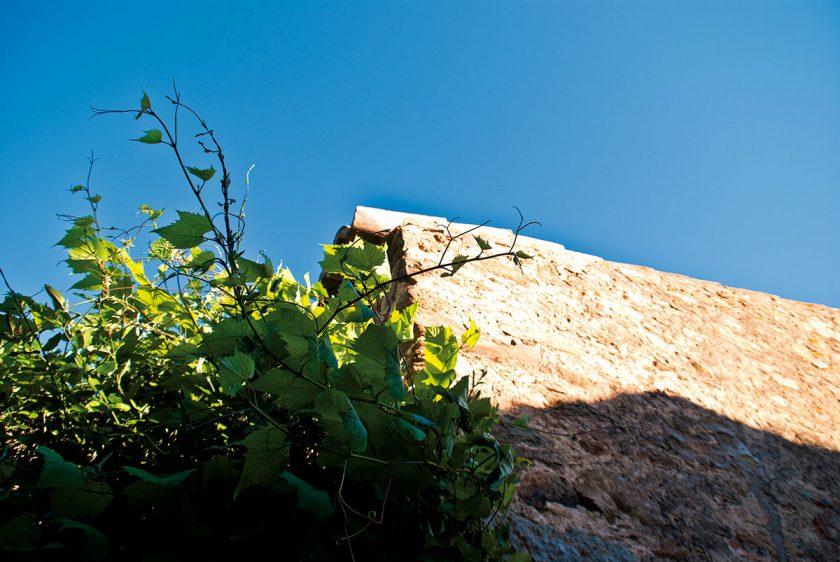 Weinberanktes Landhaus an der Costa Brava